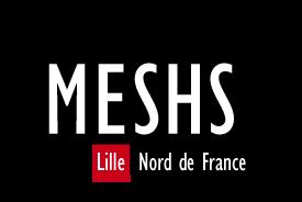 MESHS_Logo_NoirRouge_Sans